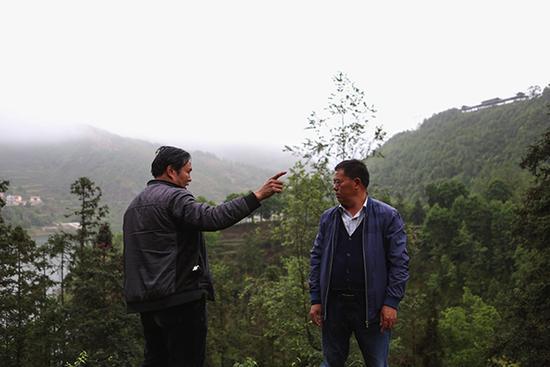 聂德友与片区管理负责人察看新栽种作物成活率,交流当日工作。