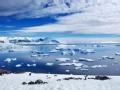 远方不远 南极奇遇