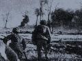 解放战争 辽沈战役(下)