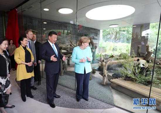 7月5日,国家主席习近平同德国总理默克尔共同出席柏林动物园大熊猫馆开馆仪式。这是习近平和夫人彭丽媛同默克尔在大熊猫馆。新华社记者 马占成摄