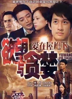 爱(2011)