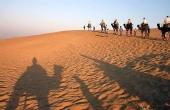 深入沙漠生活