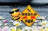 如何正确防治蜜蜂叮咬?