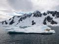 南极学前班 南极大冒险