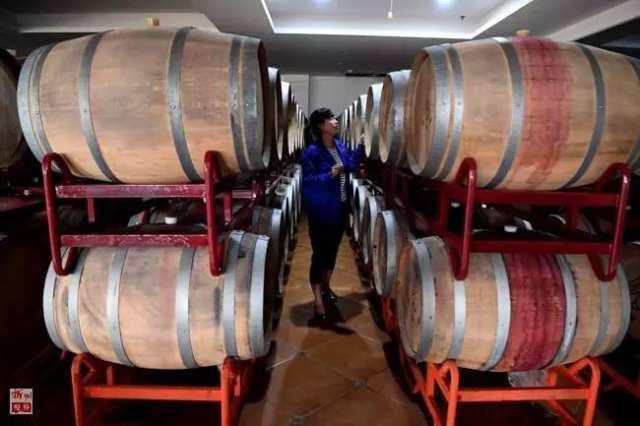 工作人员在河南省新密市袁庄乡葡萄酒酒庄内工作(2017年6月14日摄)。 新密是国家新型城镇化综合试点市,该市推行公共服务均等化,让进城农民有活干、过得好,为新型城镇化建设作出了有益探索。新华社记者朱祥摄