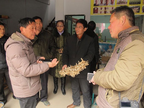 """图片说明:陈召起带村""""两委""""班子成员和村民代表到南阳考察学习花生种植"""