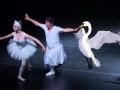 《极速前进中国版第四季片花》抢先看 张爸跳天鹅舞萌爆 张继科吐槽:练武术?