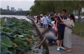 杭州西子湖荷花被游客斩首
