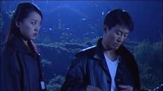 《无间光影》电视剧_全集(1-24集)高清在线观看