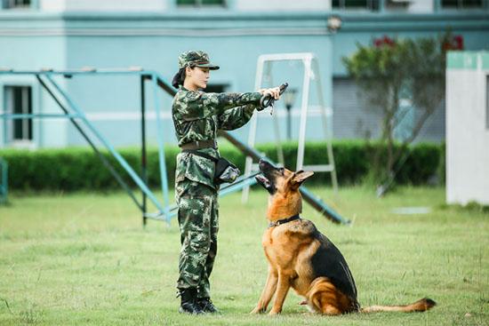 《奇兵神犬》亲和训练升级 张馨予冯瀚圃遇瓶颈