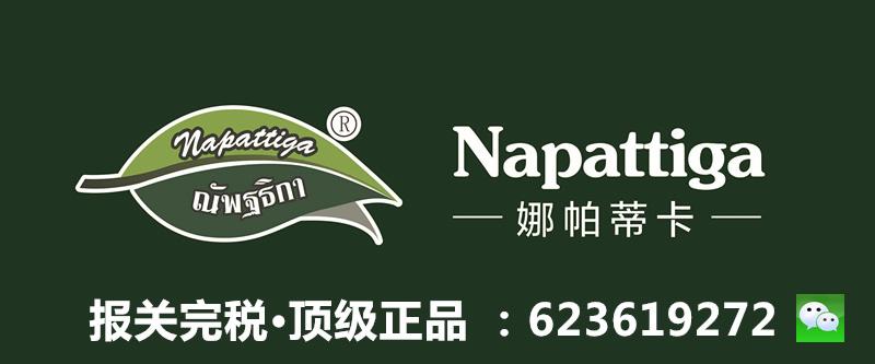 logo+napattiga +娜帕蒂卡_副本.jpg