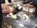 好惨啊! 胡明轩生日遭队友剥衣服强摁砸蛋糕