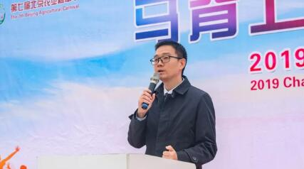 2019昌平区国际马术嘉年华在京拉开帷幕