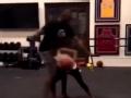 愿天堂也有篮球 科比父女一起打篮球的温情时刻