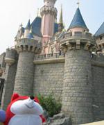 狐狐在睡公主的城堡前