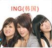 ING组合