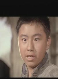 刘小峰的资料_李嫱个人资料/图片/视频全集-李嫱的电影电视剧作品-搜狐视频