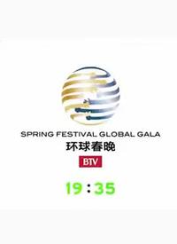 北京卫视环球春晚 2014在线观看