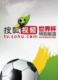 搜狐视频世界杯特别报道