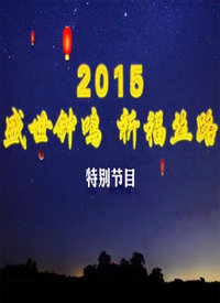 陕西卫视跨年晚会 2015