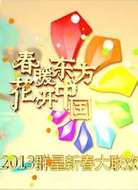 东方卫视蛇年春晚 2013在线观看