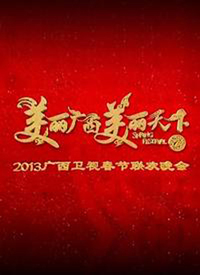 广西卫视蛇年春晚 2013
