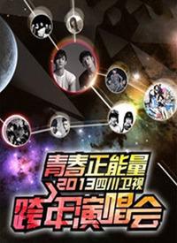 四川卫视跨年晚会 2013