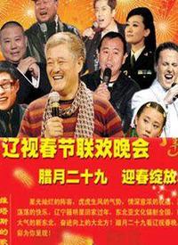 辽宁卫视春晚 2011