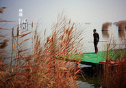 秋日沙湖,一半沙,一半水的静美世界