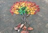 日本留学 设计秋天落叶 看看日本学生怎么玩