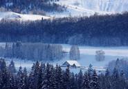 新疆绝美的冰雪秘境 颜值爆表说走就走