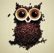 狐大医 喝咖啡提神 对大脑到底有什么影响?
