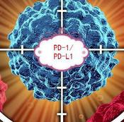 FDA批准首个不区分肿瘤来源的抗癌疗法
