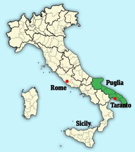 在意大利普利亚区塔兰托省曼杜里亚德一个梅萨比部落石墓,意大利考古管理局发现了拥有2400年历史的赤土陶奶瓶。公元前大约1000年,梅萨比部落便生活在杜里亚德。除了奶瓶外,考古学家还发现其他很多文物。