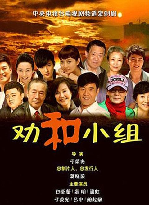劝和小组(DVD版)